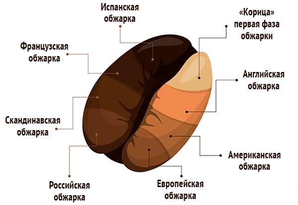 Обжарка кофе в разных странах оптом